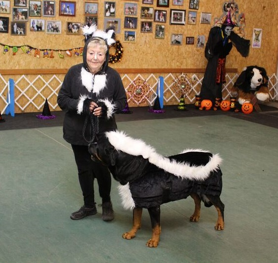 owner and dog costume